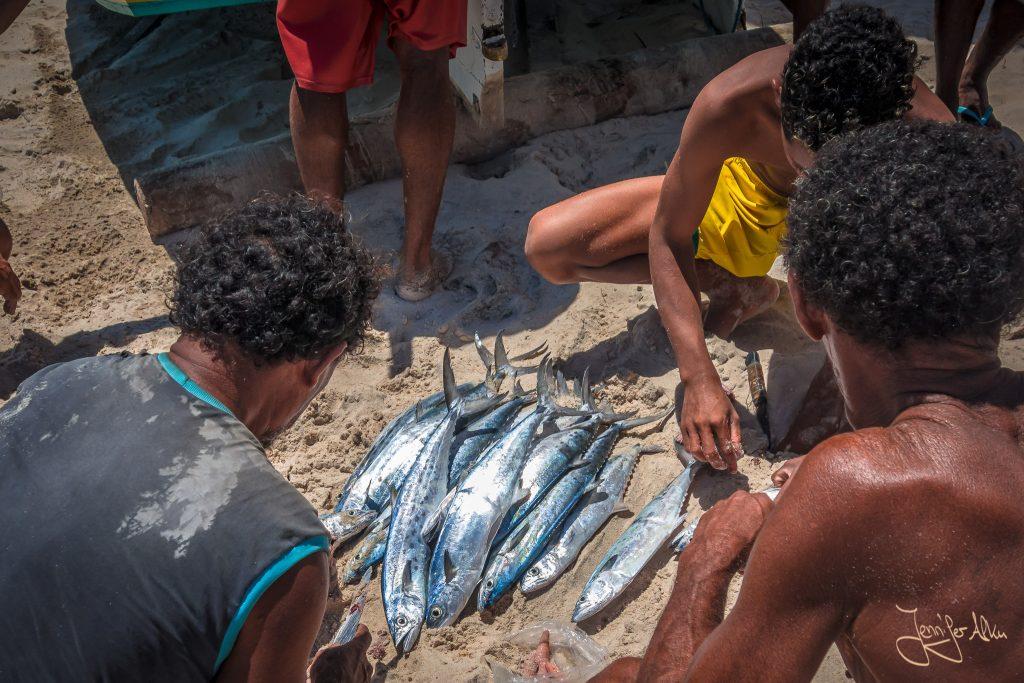 Der Fischfang des Tages wird am Strand zum Verzehr vorbereitet...
